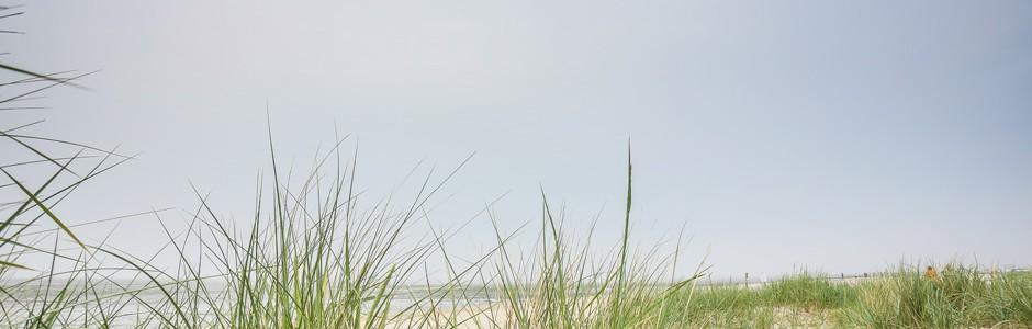 dibag_t2-20130620-201-LLPHOTO-DE